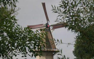 woudrichem molen 1342